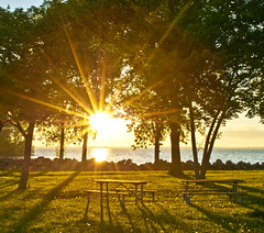 Dawn of a new picnic (daryl.larkin) Tags: light sun sunlight sunrise nikon michigan low explore erie magical metropark absolutemichigan d5000 iamflickr explore051910154