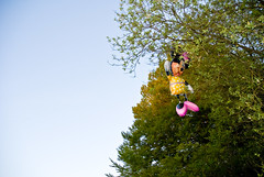 Minnie in a tree (longboy74) Tags: summer colour 2010 childrensparty disneycharacter minniemouseballoon treeonright minniemouseinatree ballooninatree blueskyonleft