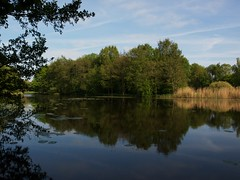 Parkje in  Winschoten