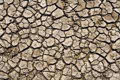 Chapped (andrewallenmoore) Tags: texture lines bay pattern dry ground rodeo chapped coarse