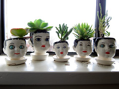 doll head planters (you can count on me) Tags: garden ceramic scary doll planters painted tiny heads etsy succulents