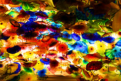 U.S.A - Las Vegas (jmboyer) Tags: voyage travel usa chihuly america canon photography hotel photo yahoo flickr lasvegas photos couleurs picture palace casino viajes planet lonely bellagio monde canoneos couleur gettyimages 6d travelphotography googleimage go amerique photoflickr photosflickr canonfrance photosyahoo imagesgoogle jmboyer img2046dxo photogo nationalgeographie jmboyer photosgoogleearth