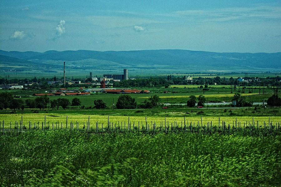 Bulgaria Green