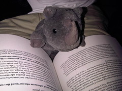 Mascot read a book