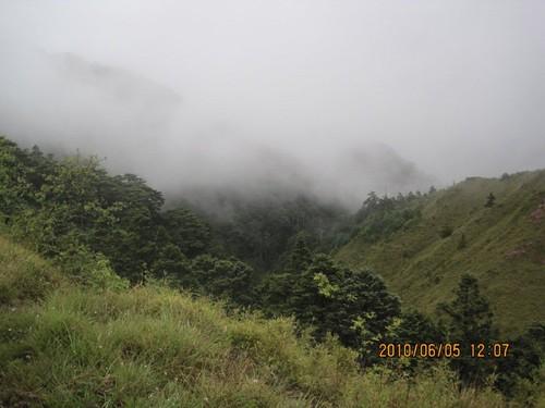 Kiwi0821 拍攝的 IMG_2179。