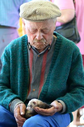 Old Man and Ferret at Lavaur Market
