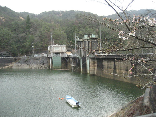 渡之瀬ダム 画像 13