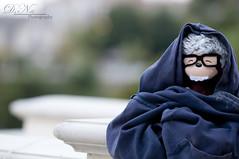 42/365 (DN Photography) Tags: summer cold monkey nikon warmth jacket 70200mm d300 diamondbar