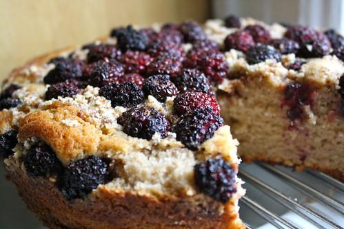 blackberry crumb cake