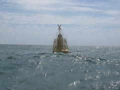 Aqua Dalek (by andygates)