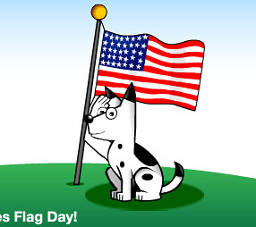 Dogpile Flag Day