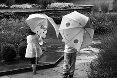 (YMarchese) Tags: friends garden umbrellas