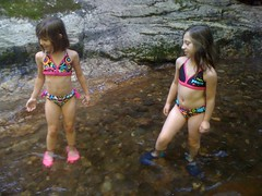 The Girls in Swim Suits at High Shoals Falls