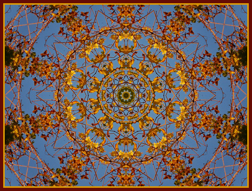 Autumn Kaleidoscope