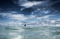 Sailboat (maciej.ka) Tags: ocean white beach water sailboat palms boat sand marine asia paradise barca philippines union dream beachlife insel western sail tropic boracay minimalism spinnaker vela bateau isle daydream minimalistic topsail tropics visayas malay segelboot philipines voilier equator paradiseisland barque pilipinas segel palay barchetta isola ewa sueno le whitebeach aklan sailingboat ere traum blueocean barcaavela songe desiderio jacht dreambeach insula barke thevisayas ewamarine batello malayaklan ajba underfullsail aklanphilipines boracayphilipines statekaglowy baleini allstanding spreadthesails