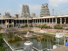Golden Lotus Pond (Sparky the Neon Cat) Tags: india tower temple golden pond asia lotus amman hindu madurai tamil nadu kulam meenakshi gopuram pottramaraikulam gopura pottramarai sundareswarar porthamarai