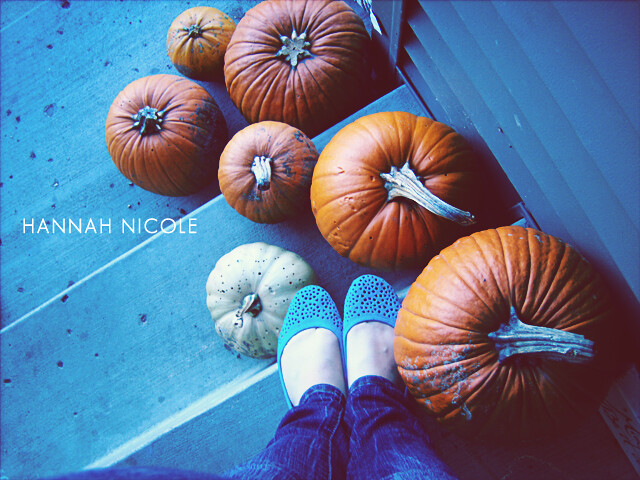 Blue Shoes & Pumpkins