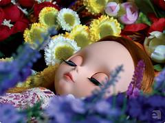 Bella em um jardim de sonhos