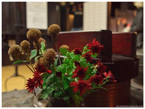 Naraisyuku (Flowers) 101023 #01