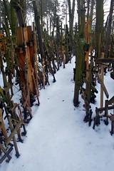M_20080113_063 (Tygryziolek) Tags: church cross religion holy sacred zima krzyz drewno podroz snieg krzyze grabarka obiekt