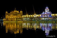 Golden Temple (somarghyadas) Tags: amritsar india goldentemple architecture religion nikon35mm nikon nightphotoghraphy