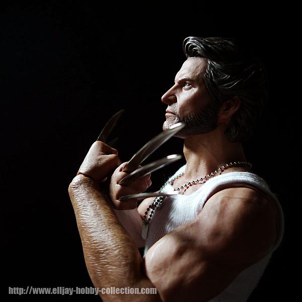 Wolverine (14)