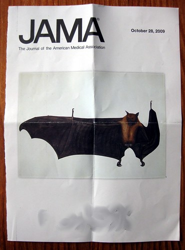 JAMA cover - batty!