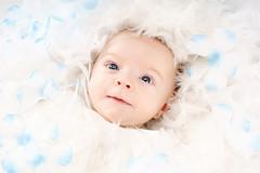 photo de bébé_06 (Rainbow Memories Photographie) Tags: baby studio photo photos bébé bébés photographeprofessionnel photographebébé photodebébé photobébé photosbébé rainbowmemoriesphotographie photosdebébé photographiedebébé photographiesdebébé photographedebébé httpwwwrainbowmemoriesbe