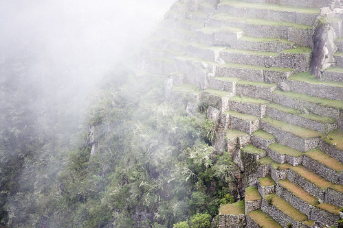 Amazing terraces head down into the Jungle and the River Urubamba, at Machu Picchu.