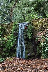 Parco Aymerich (cristianocani) Tags: sardegna park italy water garden italia sardinia di provincia acqua oristano cascata laconi parcoaymerich