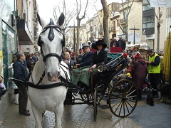 sant antoni tres tombs vilanova 2010 couple in carriage