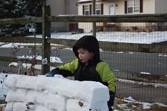 Gregor Behind Snowfort II