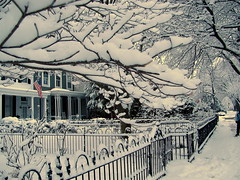 More Snow is Coming! (Kurlylox1) Tags: trees houses white snow washingtondc iron branches wroughtiron snowstorm fences americanflag covered wonderland capitolhill porches