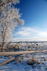 Winter in Milk River 18 (Zbigniew Lewandowski) Tags: blue winter sky canada river town milk frost filter alberta polar hmc hoya