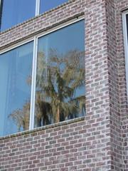 Reflection (Creating Character) Tags: house reflection tree window ga georgia lakepark brickhouse us41 lakeparkga columnedhouse