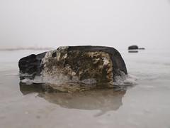Kruiend ijs IJsselmeer (NLHank) Tags: winter holland ice netherlands friesland ijsselmeer 2010 steen ijs februari kust warns schotsen oudemirdum ijsschotsen gaasterlan ijsselmeerkust kruiend