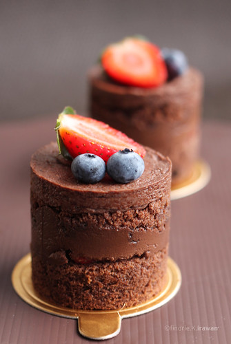 Double Chocolate Cake with Chocolate Mousse