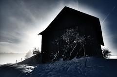 Corona (beety) Tags: schnee winter schweiz wandern wanderungen winterlandschaft hochmoor winterwanderung schneeschuh scheeschuhwanderung