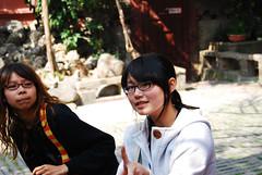 台南黑面琵鷺GO-2010020328