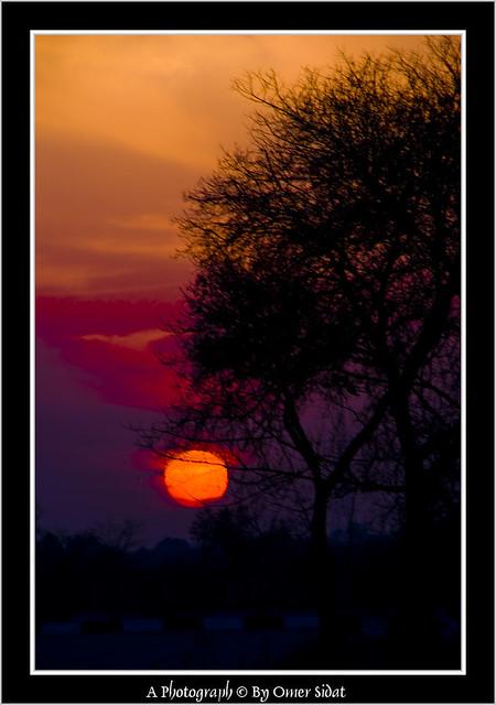 Capturing Landscapes-20100130-06060