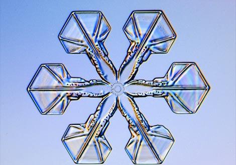 plate-snowflake-1047258-ga