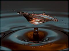DSC_1899 (Scottypics034) Tags: water nikon drop splash strobist d700 strobistwaterdrop