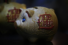 Gold pot piggy bank