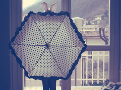 (_acido) Tags: new window umbrella cat soft place room shia pois canoneos450d