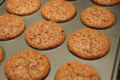 baked cupcakes.jpg
