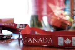 go canada! (Allie Holzman) Tags: canada canadian lanyard