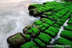 Bean curd rock (joyoyo) Tags: park city longexposure bw rock landscape island dawn nikon taiwan bean seashore keelung curd hoping beachscape ndfilter neutraldensityfilter longexposurephotography timeexposurephotography   nd106    joyoyo bwnd106 bwnd64