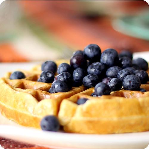 buttermilk waffle recipe. a Buttermilk Waffle Recipe