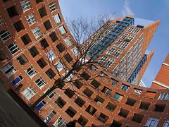 nieuw Den Haag (Plutone (NL)) Tags: new city blue red sky brick landscape blauw toren denhaag lucht rood vws landschap baksteen castalia schuin