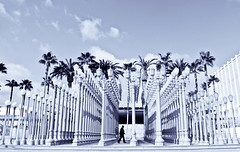 all good art is an indiscretion. (red.dahlia) Tags: losangeles lacma wilshireblvd tennesseewilliams lacountymuseumofart chrisburden nikond90 urbanlightinstallation allgoodartisindiscretion
